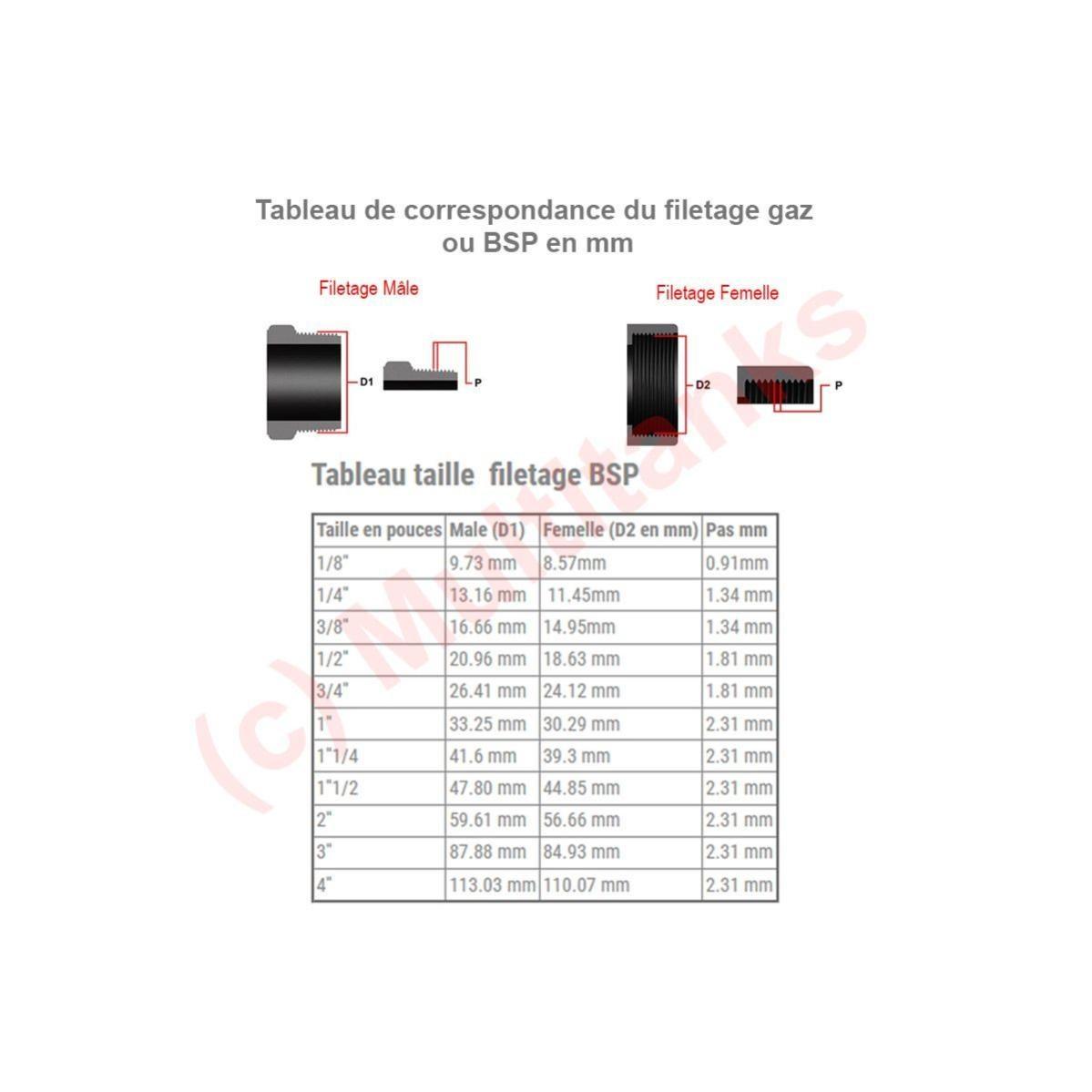 Bsp Filetage Femelle Métrique à Clipser Pneumatique Eau Etc