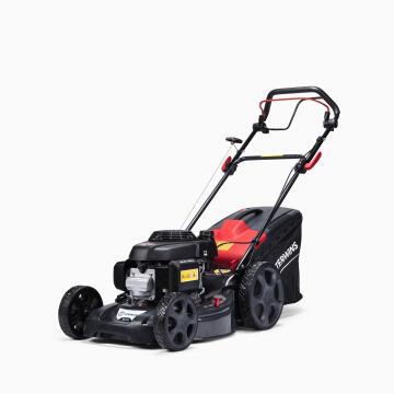 Lawn Mower Gas Sterwins Gcv160
