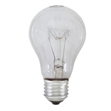ROUGH SERVICE LAMPS 60W ES