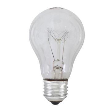 ROUGH SERVICE LAMPS 100W ES