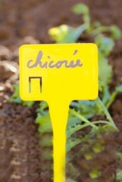 Label Plant NORTENE 30cm Plastic