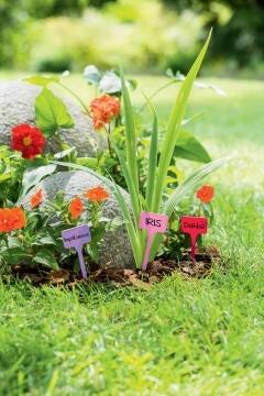 Label Plant NORTENE 15cm Various colours Plastic