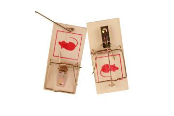 Trap Mouse NORTENE 5cmx10cm Wooden