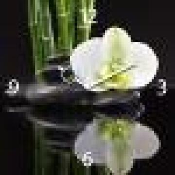 GLASS CLOCK BLACK ORCHID I 20X60