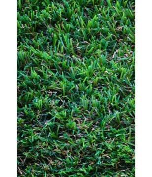 Artificial Grass Naterial Comino 2X5M