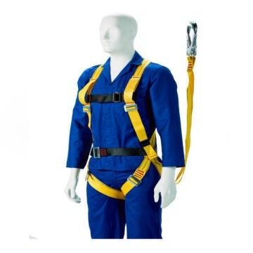 Harness Full Body Double Lanyard & Scaffold Hook